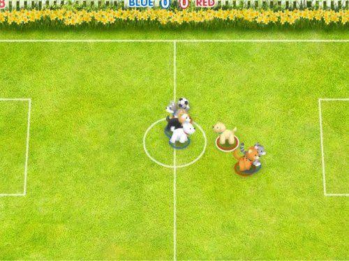 Зверинный Футбол