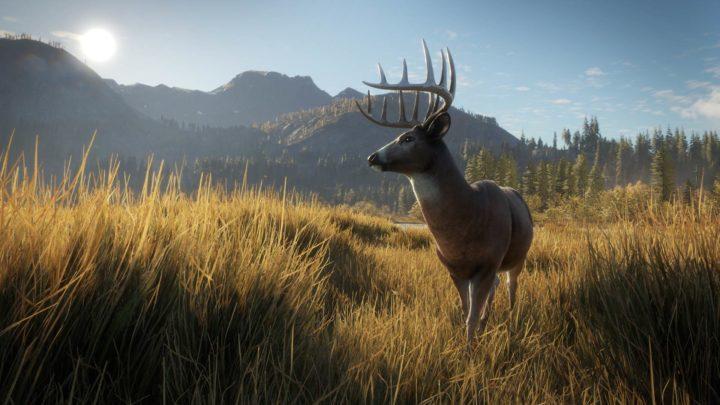 The Hunter: Call of the Wild - трейнер в помощь начинающим охотникам