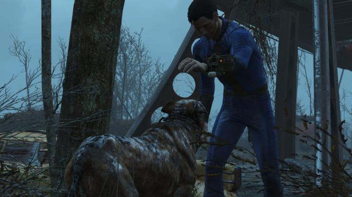 В новой модификации Fallout IV - любая бродячая собака может стать вашим компаньоном для исследования пустошей